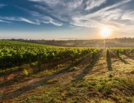 Tuscany Featured Image